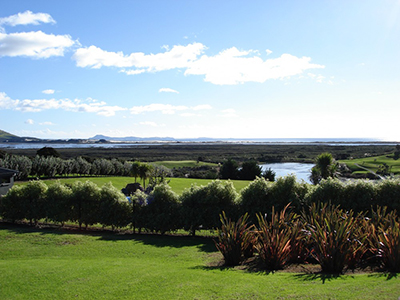 Things to do in Taupo Bay Northland New Zealand - visit Carrington Golf Course